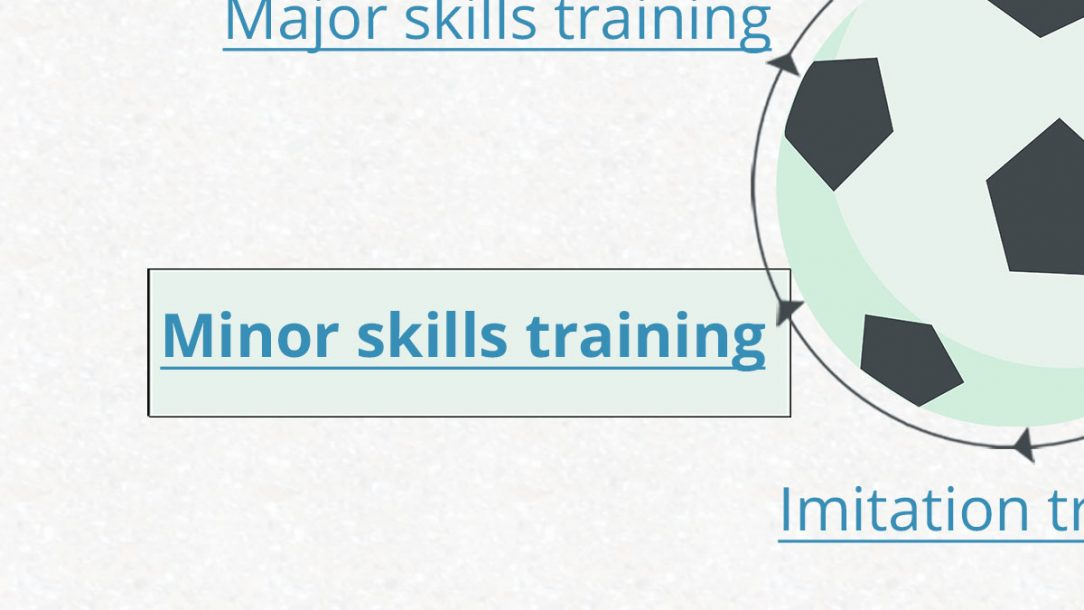 Optimise Your Training with Minor-skills Training